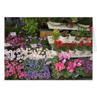 Cartes Fleuriste de Séoul