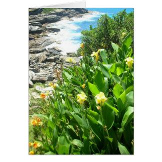Cartes Fleurs à la crique de Tamarama