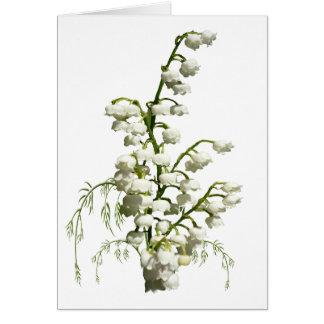 Cartes Fleurs blanches du muguet