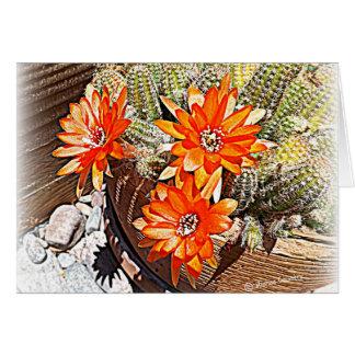 Cartes Fleurs de cactus de corde