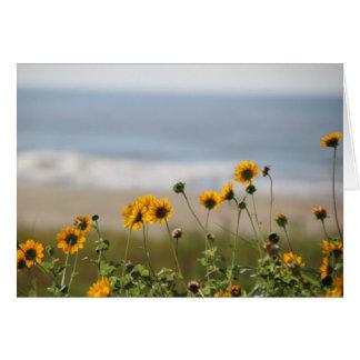 Cartes Fleurs de plage sur l'île de Galveston