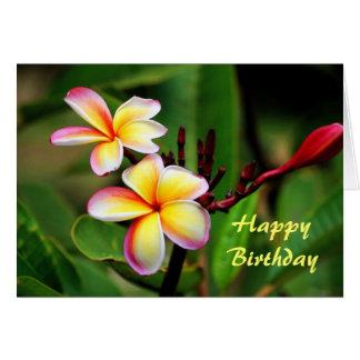 Cartes Fleurs de Plumeria de Maui, anniversaire