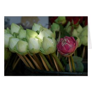 Cartes Fleurs de temple
