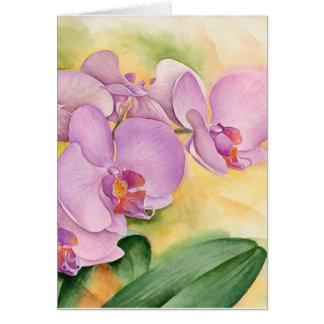 Cartes Fleurs d'orchidée de Phalaenopsis - multi
