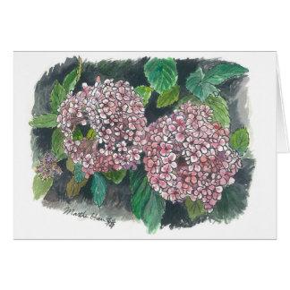 Cartes fleurs - hortensia rose