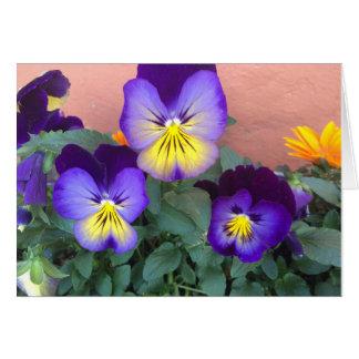 Cartes Fleurs pourpres et jaunes