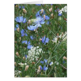 Cartes Fleurs sauvages bleus