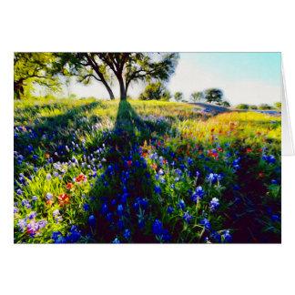 Cartes Fleurs sauvages, lumière, et ombre
