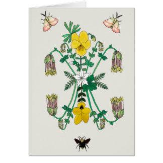 Cartes Flora et faune