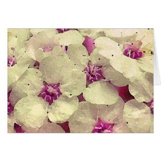 Cartes Floral blanc et rose