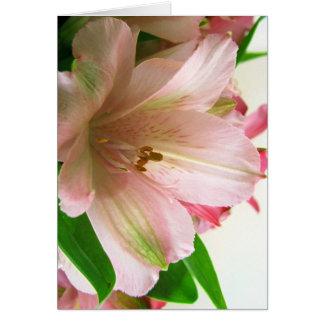 Cartes Floral toute l'occasion