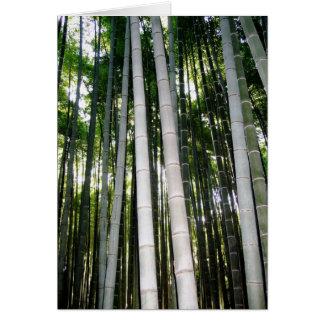 Cartes Forêt de bambou d'Arashiya