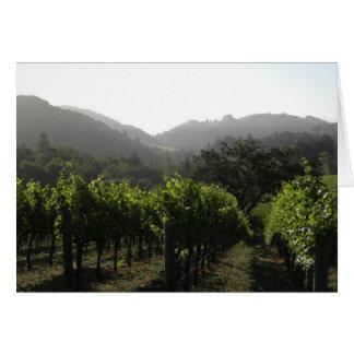 Cartes Forêt de vignoble de matin