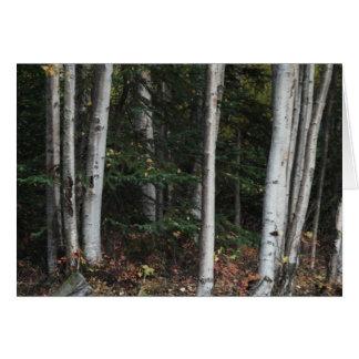 Cartes Forêt pour les arbres par Logan Guinn