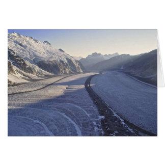 Cartes Fossé de Gilkey de champ de glace de Juneau (blanc
