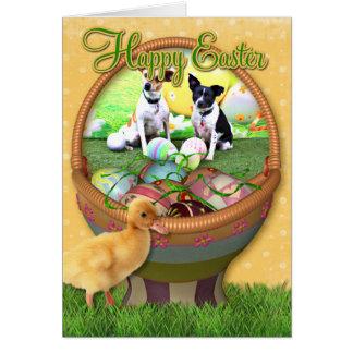 Cartes Fox de Pâques Terrier - Sadie et Baboo