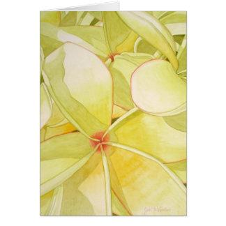 Cartes Frangipani jaune citron