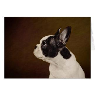 Cartes Frenchie