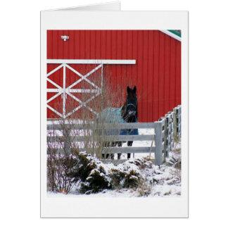 Cartes Fresian dans la neige