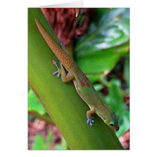 Cartes Gecko de la poussière d'or