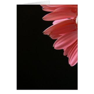 Cartes Gerbera rose sur le noir