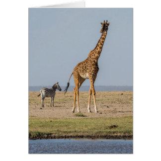 Cartes Girafe par un point d'eau