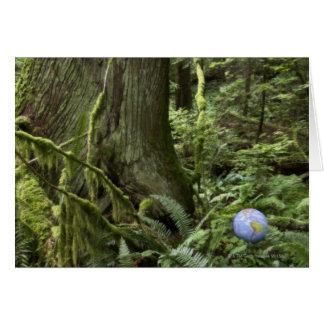 Cartes Globe dans la forêt