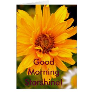 Cartes G'Morning Starshine