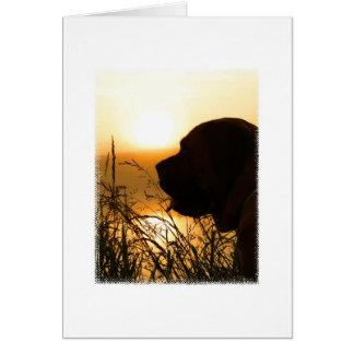 Cartes Grande silhouette anglaise de mastiff au lever de