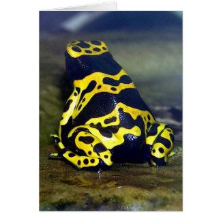 Cartes grenouille Jaune-réunie de poison - leucomelas de
