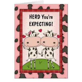 Cartes Grossesse - vaches pour les femmes enceintes
