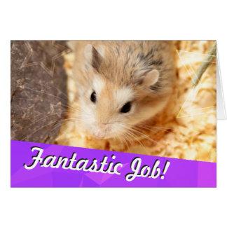 Cartes Hammyville - félicitations de hamster
