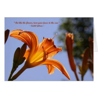 Cartes Hémérocalle orange