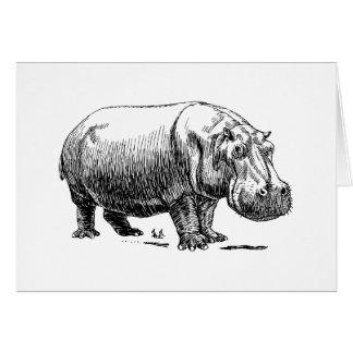 Cartes Hippopotame