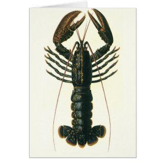 Cartes Homard vintage, crustacé marin de la vie d'océan