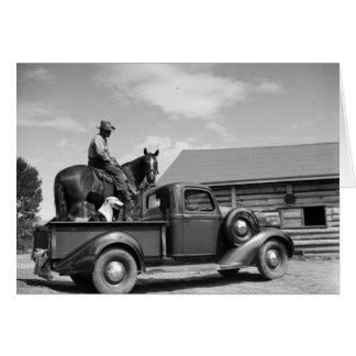 Cartes Homme sur un cheval avec un chien dans un camion