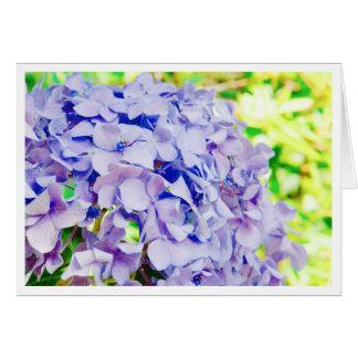Cartes Hortensia lumineux d'été