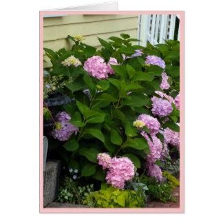 Cartes Hortensias roses de brique