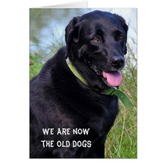 Cartes Humour noir d'anniversaire de labrador retriever