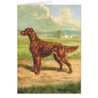 Cartes Illustration vintage - chien de poseur irlandais,