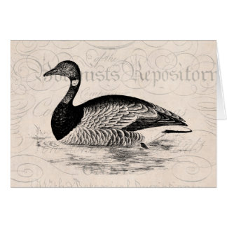 Cartes Illustration vintage d'oie - modèle des oies