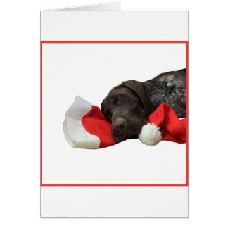 Cartes Indicateur grisâtre brillant de Noël