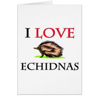 Cartes J'aime des Echidnas