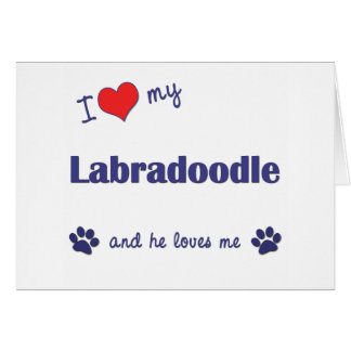 Cartes J'aime mon Labradoodle (le chien masculin)