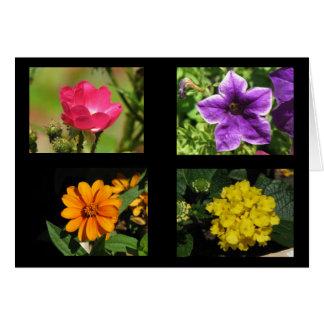 Cartes Jolie collection de fleurs
