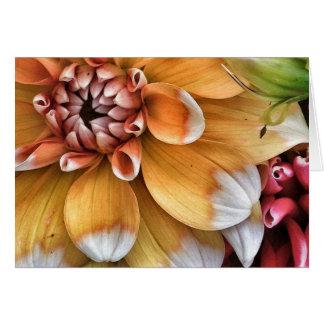 Cartes Jolies fleurs de dahlia