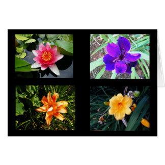 Cartes Jolies fleurs, vides