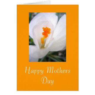 Cartes Jour de mères heureux