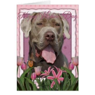 Cartes Jour de mères - tulipes roses - mastiff - fureteur