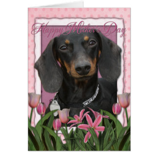 Cartes Jour de mères - tulipes roses - teckel - Winston